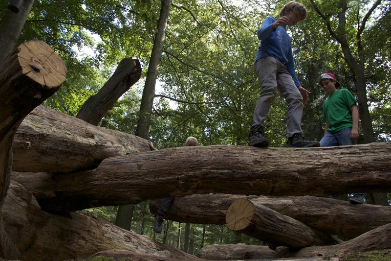 Totholz-Kletterhaufen